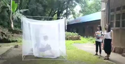 研究蚊子13年是怎样的体验?长沙妹子常年喂蚊子